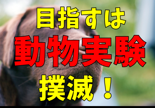 動物実験をしていない化粧品メーカー!動物を救うために出来ること | bitomos