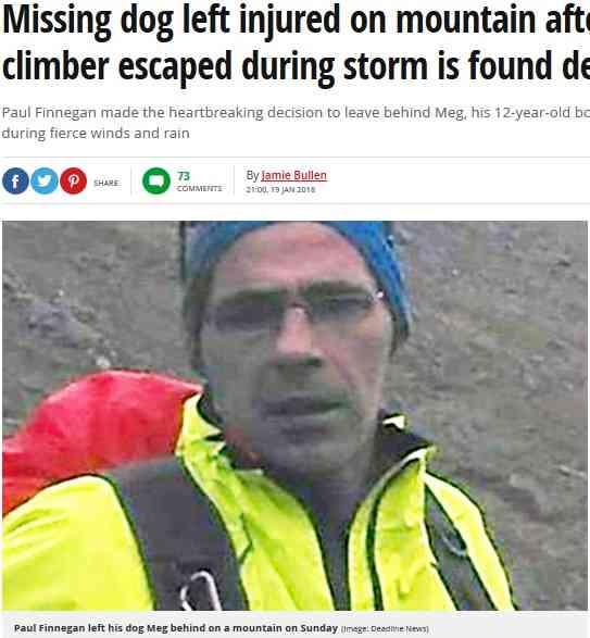 【海外発!Breaking News】動けなくなくなった飼い犬を山に置き去りにし死なせた登山者に非難殺到(英)  | Techinsight(テックインサイト)|海外セレブ、国内エンタメのオンリーワンをお届けするニュースサイト