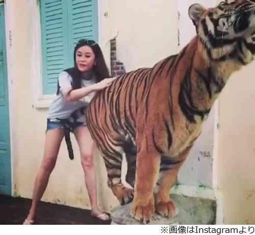 観月ありさの股にトラのしっぽが… | Narinari.com
