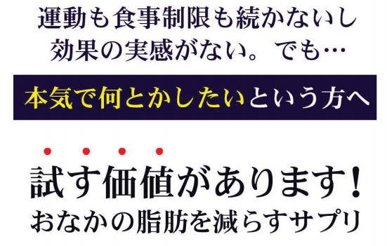 """""""イソフラボンで痩せる""""は景表法違反 9社に計1億円の課徴金"""
