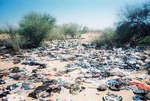 1日で平均69人が殺される恐ろしい国は?年間で2万5000件の殺人事件