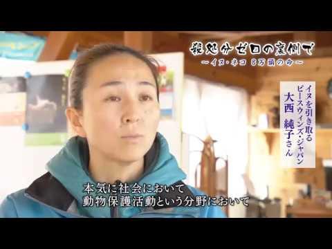 テレメンタリー2017「殺処分ゼロの裏側で~イヌ・ネコ8万頭の命~」+2017/03/05 04:30 日曜日 - YouTube