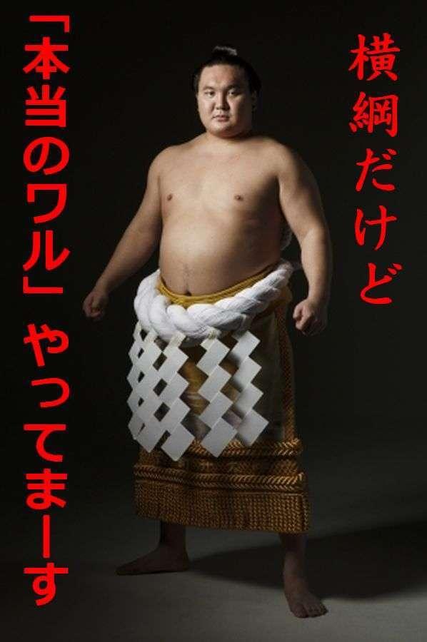 今後の相撲界どうなると思いますか?