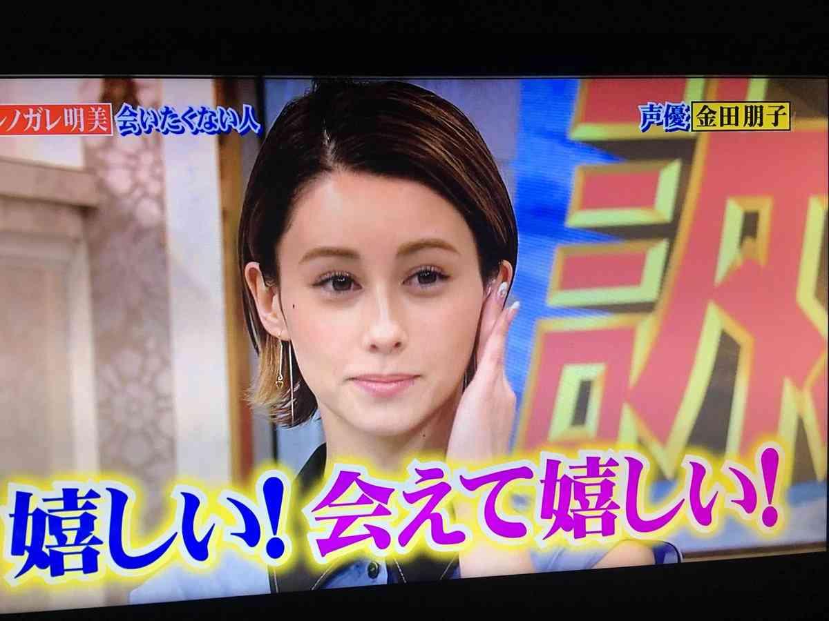 ダレノガレ明美 金田朋子を共演NGにしていたと明かす