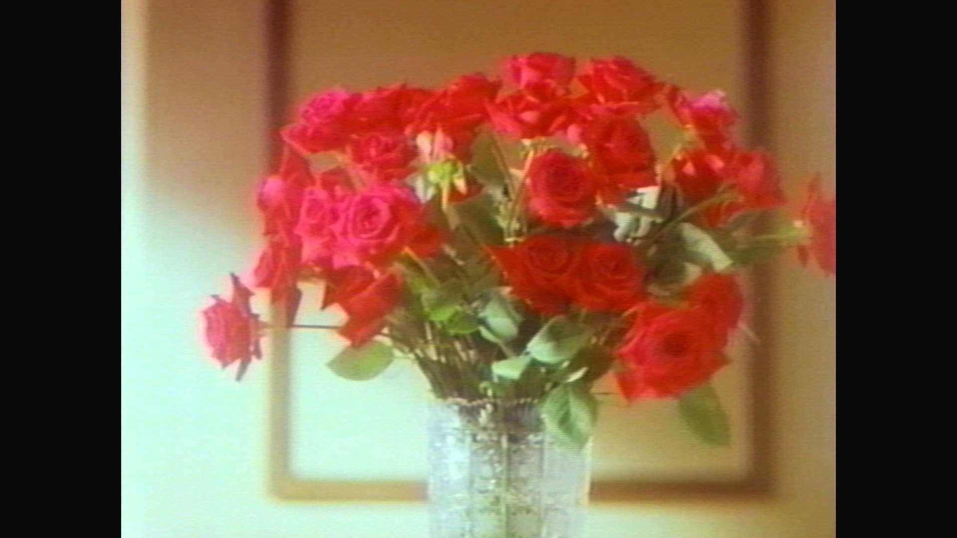 中村紘子 ハウス ザカリー 1993年 - YouTube