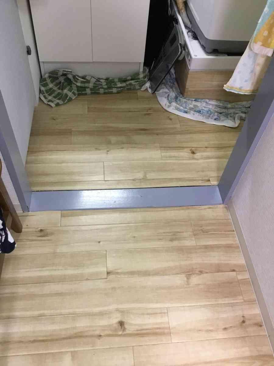 【食事中閲覧注意】猫砂が原因と思しきトイレの惨劇にネット民悲鳴!猫砂は流さないで!
