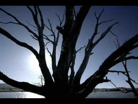 MISIA - 眠れぬ夜は君のせい - YouTube