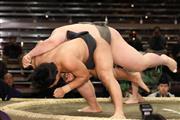 大鵬の孫・納谷、朝青龍のおいをすくい投げで破る!/初場所  - スポーツ - SANSPO.COM(サンスポ)