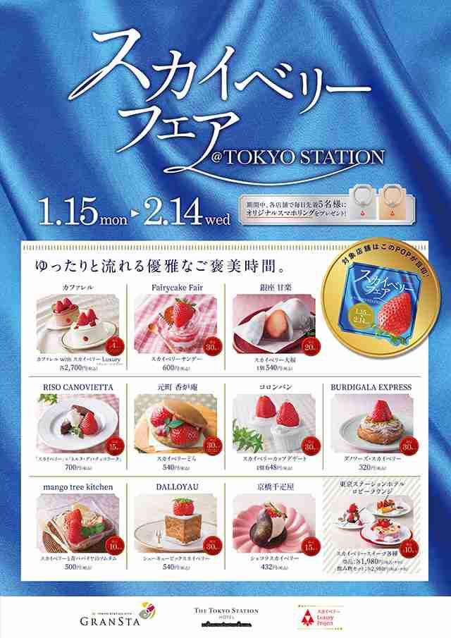 1月15日(月)~2月14日(水)「スカイベリーフェア@TOKYO STATION」を開催! | イベント情報 | 三ツ星いちご「スカイベリー」