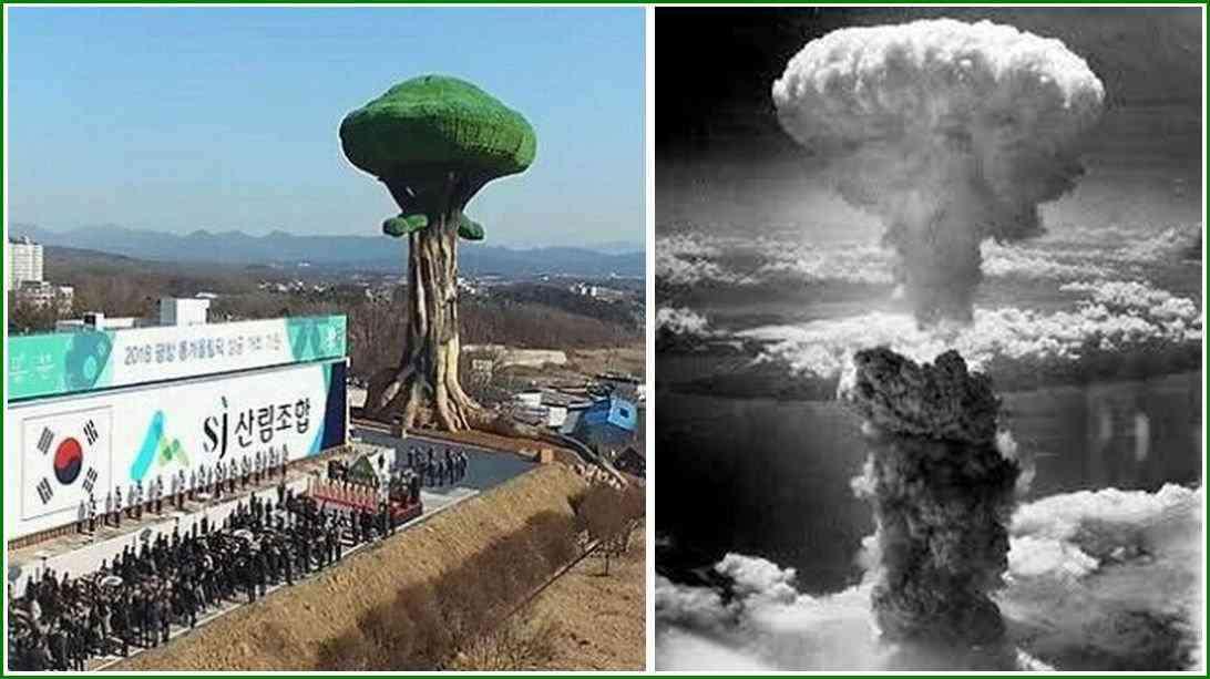 北朝鮮、金正恩氏写真を燃やされ激怒 五輪「慎重に考慮」