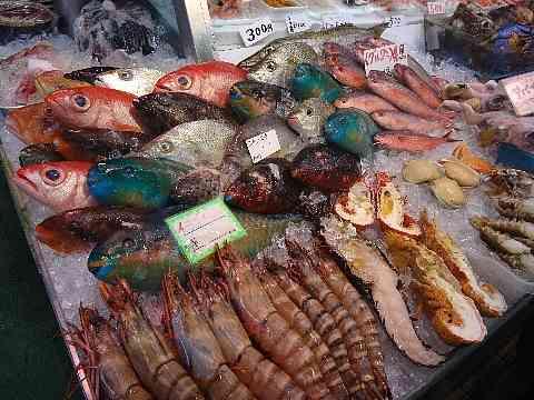 よく食べる魚と住んでる地域を教えて!