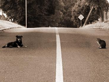 良い人か嫌な人かを決める境界線
