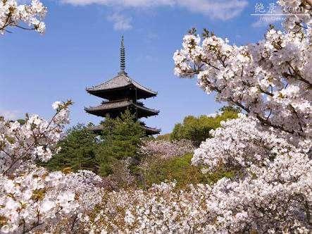 京都あるある。
