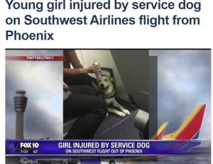 セラピーアニマルの機内持ち込みで事故 犬が少女に噛みつく(米)