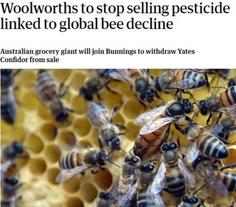 オートラリアの大手スーパーが蜜蜂に悪影響の農薬販売を中止