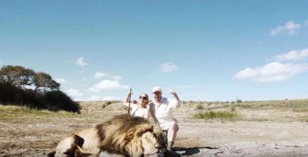 【衝撃映像】ライオンを仕留めたので記念にパシャり!!!その後ライオンに襲撃されたトロフィーハンター | ネタリブート