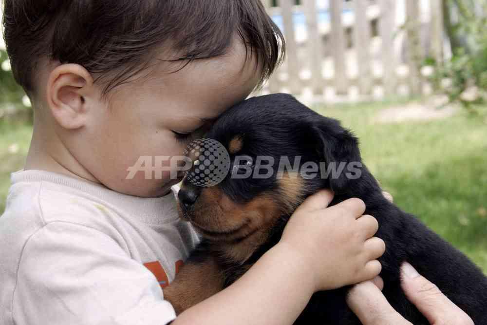 「犬と一緒に育つ赤ちゃんは病気に強い」、研究 写真1枚 国際ニュース:AFPBB News