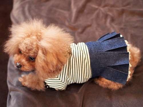デニムスカートの着こなし