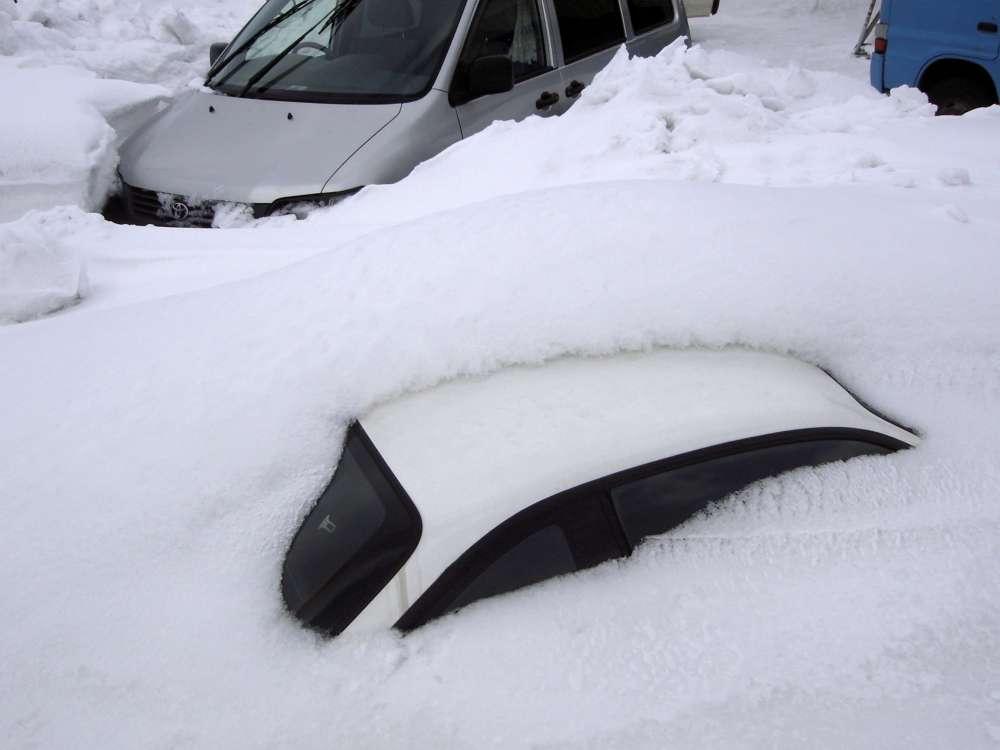 【情報交換・実況トピ】記録的大雪【北陸・新潟】