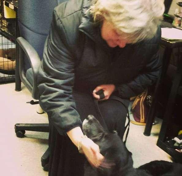 まさに奇跡!10年間迷子になっていた犬が飼い主と再会
