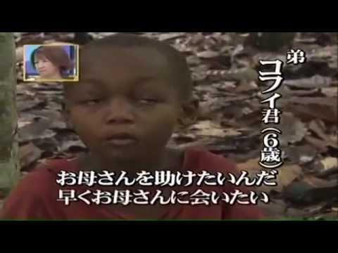カカオ農園で搾取子ども - YouTube