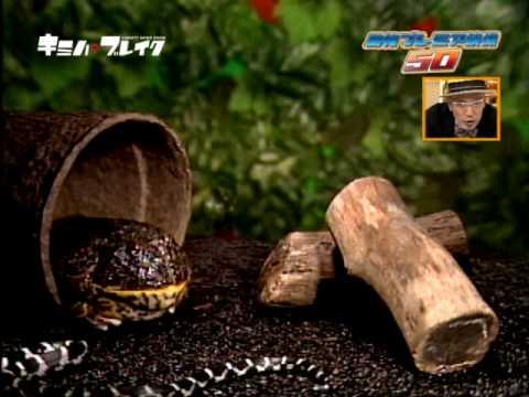 かえるが梅干を食べると - YouTube