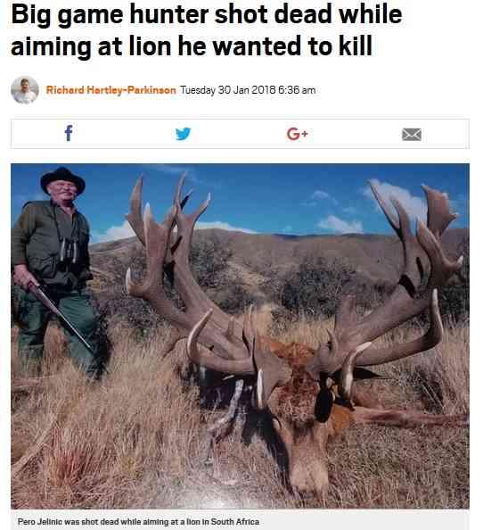 【海外発!Breaking News】ライオンを射殺しようとしたトロフィーハンター、流れ弾で死亡(南ア) | Techinsight(テックインサイト)|海外セレブ、国内エンタメのオンリーワンをお届けするニュースサイト