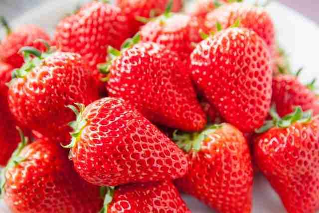 日本のイチゴが韓国流出、腹は立つけど実は損失は出ていない – アゴラ