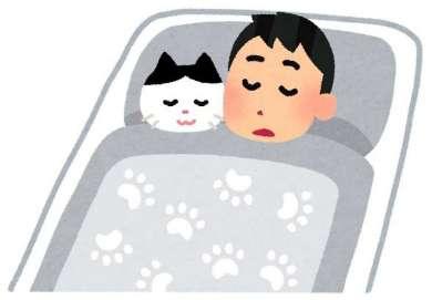 寝るときに乗っかってくる猫ちゃんを締め出したら…? 飼い主側が全面降伏せざるを得ない状況に