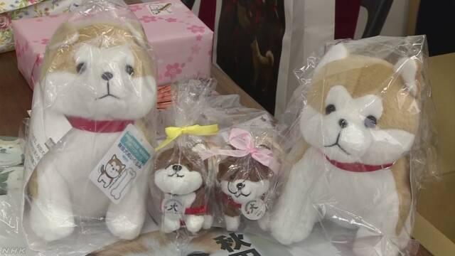 ザギトワに秋田犬のぬいぐるみ贈る 秋田県と大館市   NHKニュース