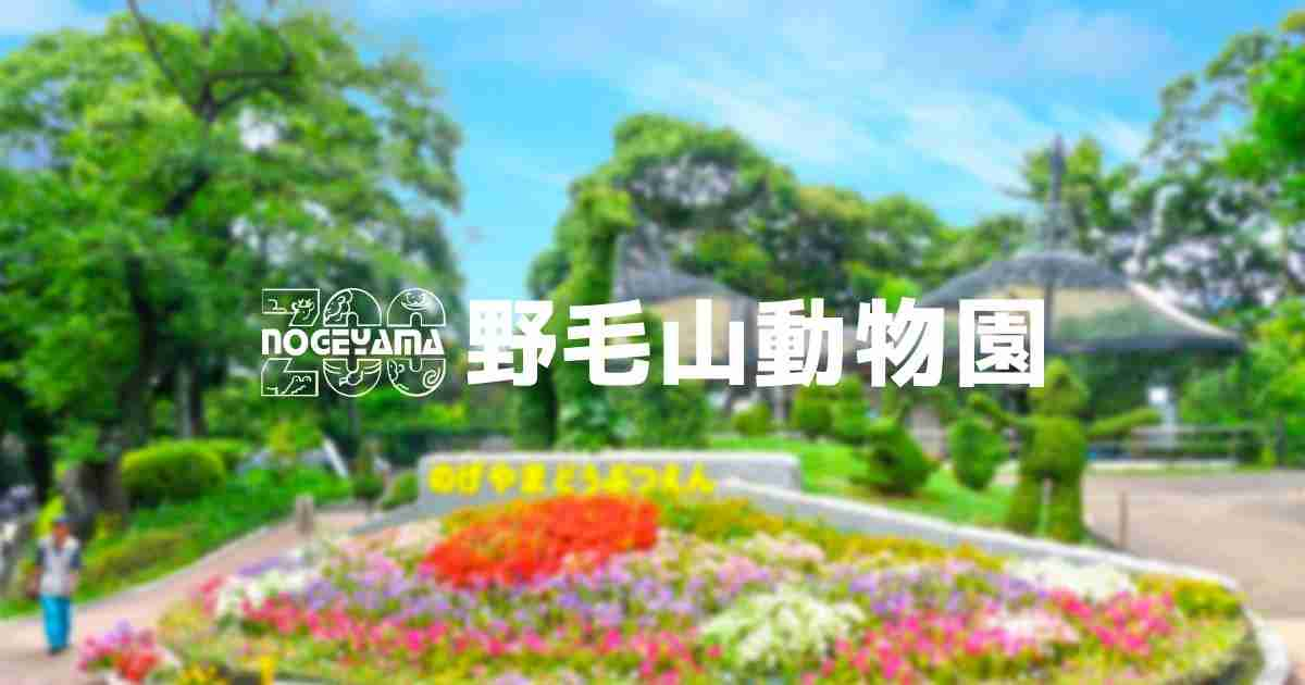 神奈川県のおすすめデートスポット