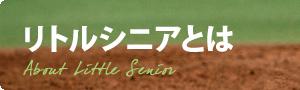 リトルシニアとは:沿革 | 日本リトルシニア中学硬式野球協会関東連盟