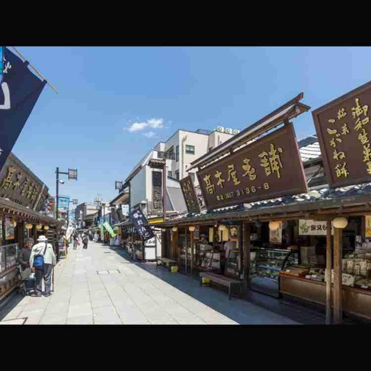 春の東京観光