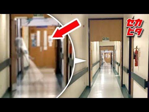 これは身震い!亡霊の姿かもしれない7つの映像 - YouTube