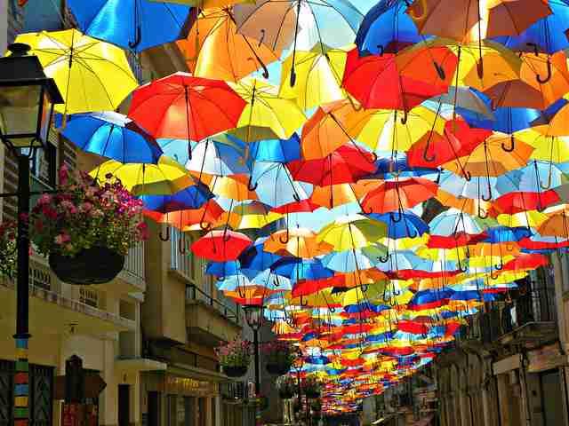 雨の確率、どの程度で傘を持って行きますか?