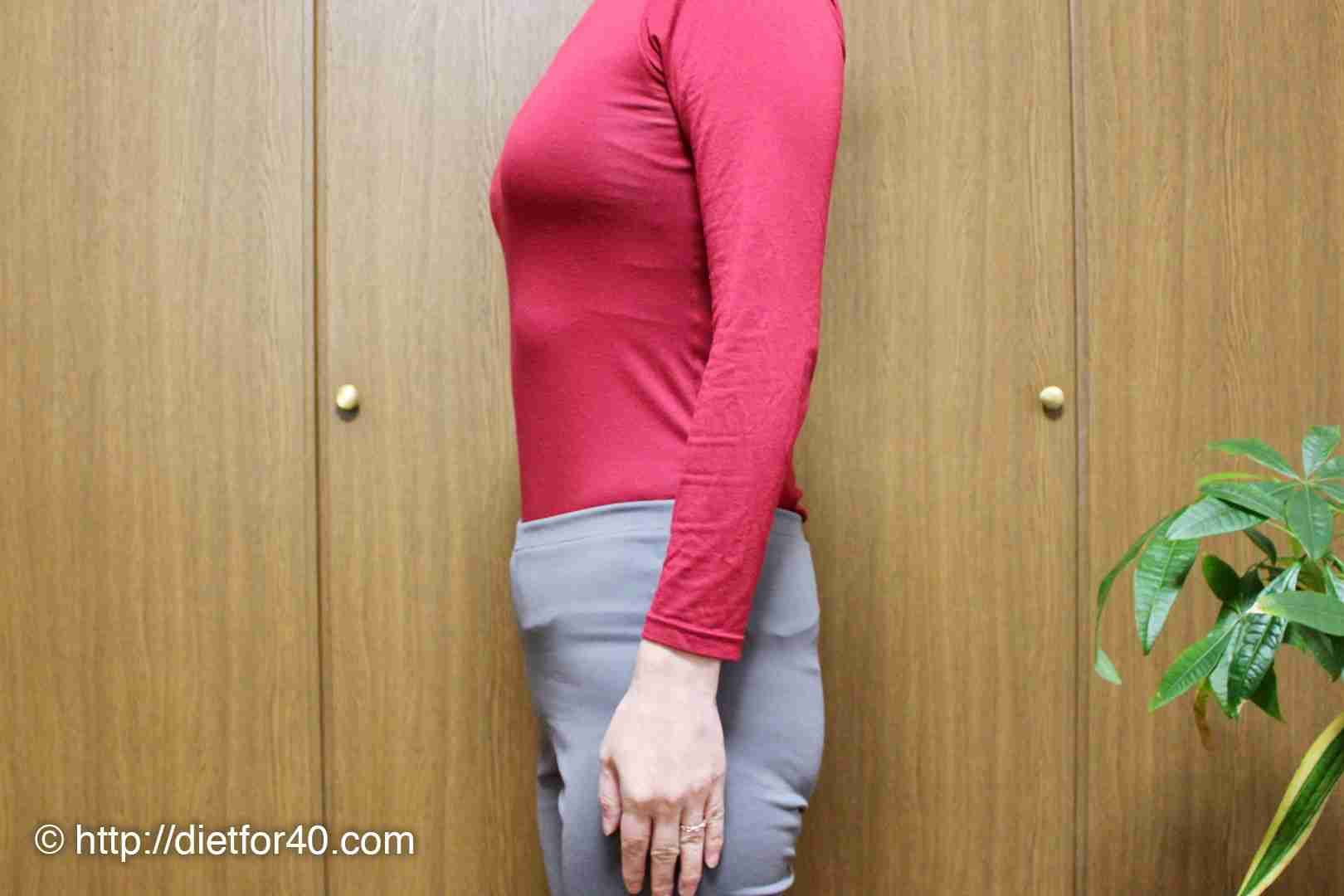 20代の頃と同じ体重まで減量したけど、スタイルはまったく違うアラフォーの今。BMIじゃ測れないお腹ぽっこり・たるんだ体に喝を入れる - 目指せ20代!アラフォー女性の脱お腹ぽっこりダイエット