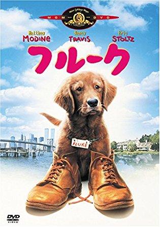 動物が活躍する映画
