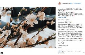 紗栄子、ロンドンの新生活で震災を忘れた?ネットで批判殺到のワケ(1ページ目) - デイリーニュースオンライン