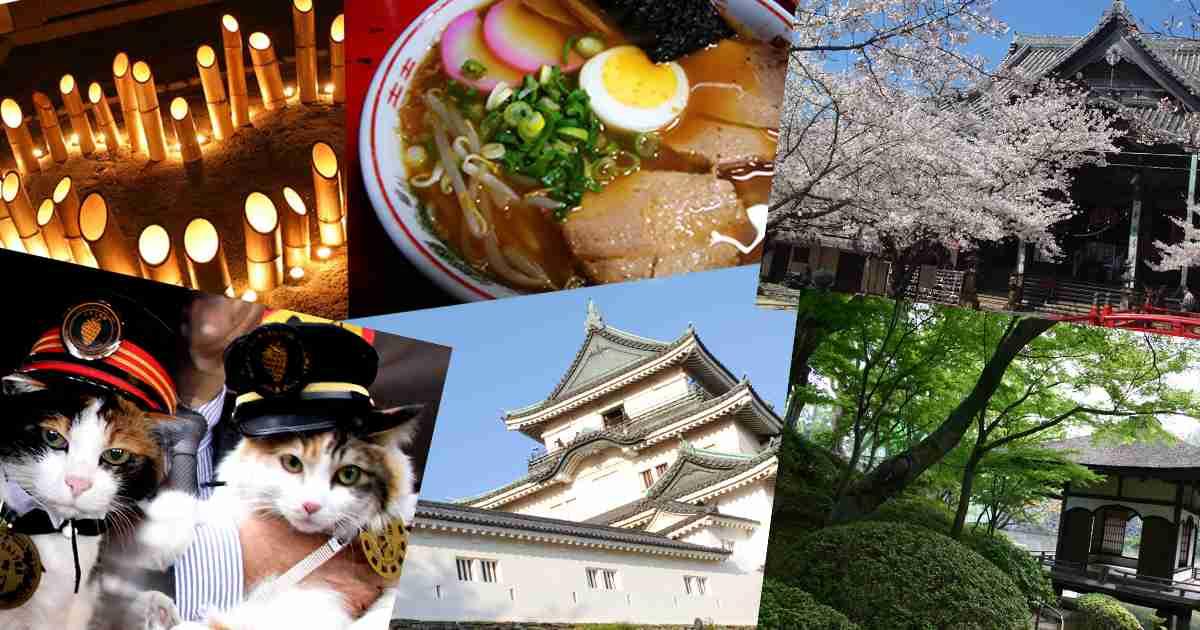 和歌山市観光協会 公式HP|食べる:和歌山中華そば・ラーメン