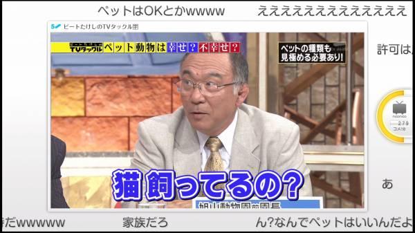 日本の動物殺処分の多さについて