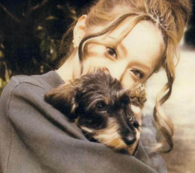 浜崎あゆみが飼っている犬の犬種と名前まとめ!今まで何匹いていつからいる? | 今日のはてな?