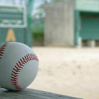 稲村亜美「中学生に襲われる」異様な光景......リトル野球大会始球式で「怖すぎる」事態に | ギャンブルジャーナル | ビジネスジャーナル