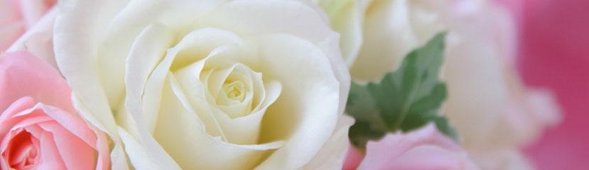 http://www.otona-beauty.com/性犯罪者や容疑者128人が語った「痴漢しやすい女-4419.html