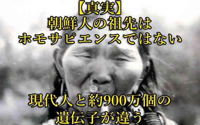 ★【要拡散】 朝鮮人・韓国人はホモサピエンスではない ※現代人と約900万個の遺伝子相違 : 世界の真実や報道されないニュースを探る 地球なんでも鑑定団