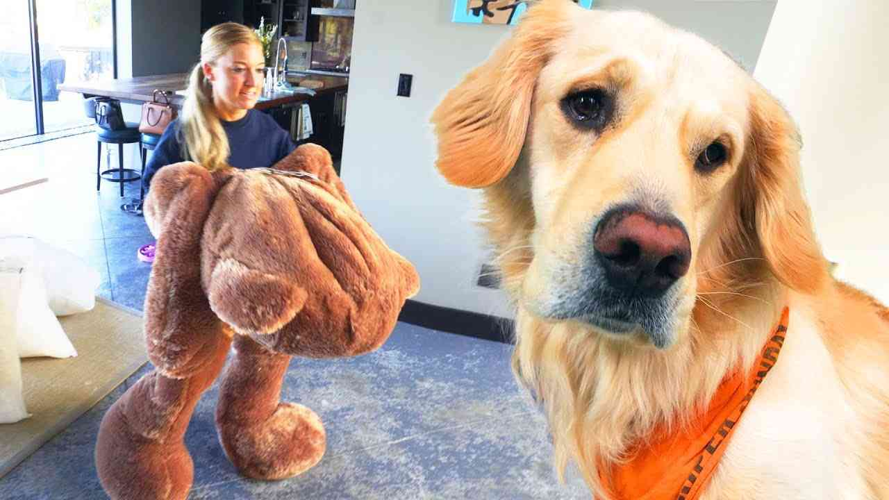 DOG TOY COMES TO LIFE! (Giant 6ft Teddy Bear) - YouTube