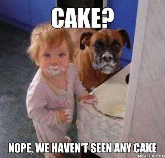 【金曜日の夜だから】ケーキを持ち寄って雑談しましょう