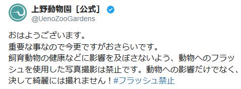 上野動物園が「写真撮影の時フラッシュをたかないで」と注意喚起 園内に『フラッシュ禁止』の看板が多数あるにもかかわらず散見される状況