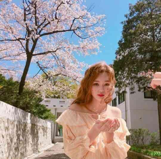 お花見前にインスタ映え準備♡벚꽃(桜)を使ったオルチャンのフォトアイディア特集! | 韓国情報サイトmanimani