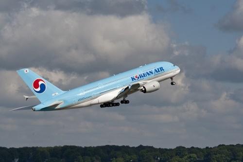 機内の食事用トレイにゴキブリ…大韓航空、検疫法まで違反