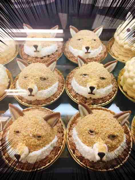 「チベットスナギツネ」ケーキ爆誕!すわった目で見つめるシュールな表情を再現